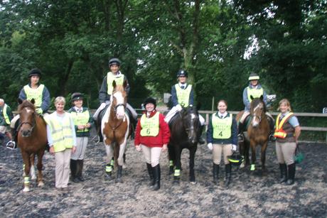 Riding School Ponies